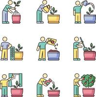 Indoor gardening stages RGB color icons set vector
