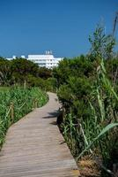 Pedestrian walkway on Migjorn beach in Formentera in Spain photo