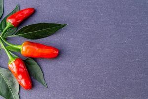 pimiento rojo picante vegetal foto