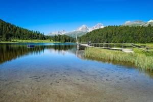 Small fish in mountain lake photo