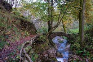 Small ancient bridge of rocks in a creek in the woods photo
