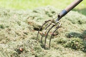 Pitchfork farmer in hay photo