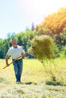 Man farmer turns the hay with a  fork photo