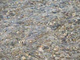 muestra la espuma de la ola del mar, estanque de vida silvestre, playa foto