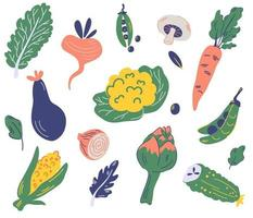 Set of vegetables. Organic and healthy food. vector