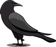 Black Crow with Shadow. Black Bird. Common Birds. vector