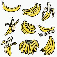Doodle freehand sketch drawing of banana fruit. vector