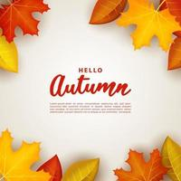 Autumn background with leaves in the corners. vector