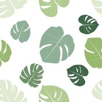 Monstera leaaves seamless pattern natural tropical background. vector