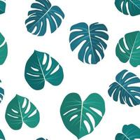 Monstera leaaves seamless pattern natural tropical background vector