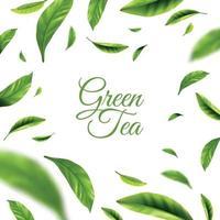 Green Tea Background Vector Illustration