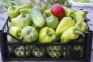 verduras en un primer plano de la caja. pimientos, pepinos y tomates frescos foto