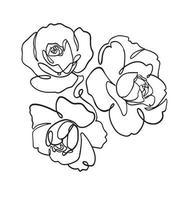 Vector line art flower pen drawing illustration graphic resource