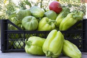 verduras en una caja negra. pimientos, pepinos y tomates frescos foto