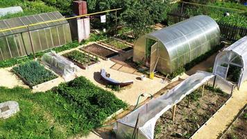 Vegetable garden top view. Beds with vegetables and berries photo