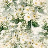 Delicate White Floral Textile Print vector