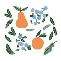 Vector simple modern orange, pear, blue berry leaf illustration
