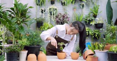 Woman Potting a Plant video
