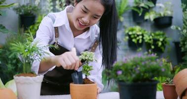 Woman Potting a Plant in A Ceramic Pot video