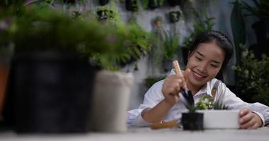 Woman Potting Many Succulents video