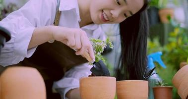 Woman Caringly Potting a Plant video