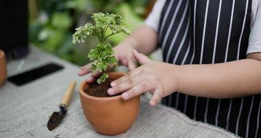 close up garota plantando árvores video