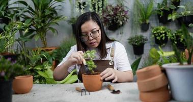 mulher plantando uma planta video