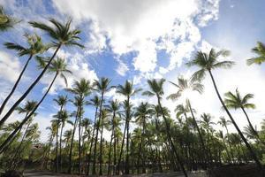 Estanque de peces en el parque histórico de Kalahuipuaa en la isla grande de Hawaii foto
