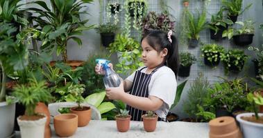 garota borrifando água nas plantas da casa video