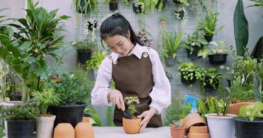 Woman Planting a Plant in A Pot video