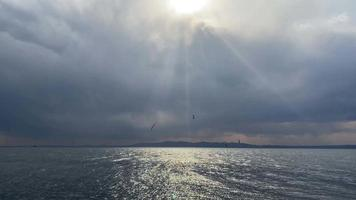 panorama del paisaje marino con los rayos del sol y las gaviotas video
