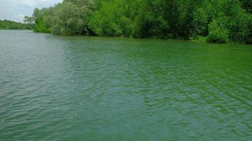 paysage de l'écosystème par rafting traditionnel en bambou video