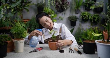 mulher borrifando água em uma planta em uma loja de jardinagem video