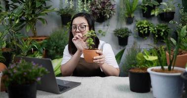 mulher vende planta online video