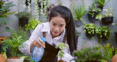 Closeup of Woman Spraying Water to Plant video