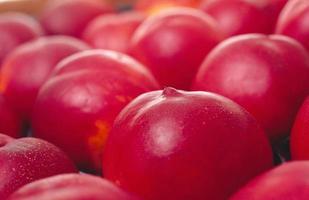 las manzanas frescas contienen nutrientes foto