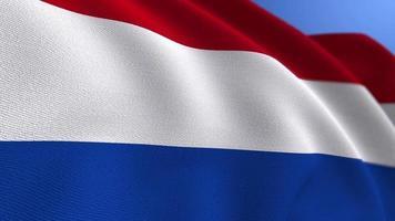 agitant le fond de boucle d'animation du drapeau des pays-bas video