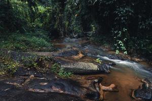 stream after rain in tropical forest photo