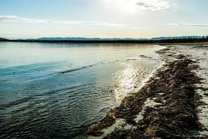 Shoreline Shallow Bay Gros Morne National Park Newfoundland Canada photo