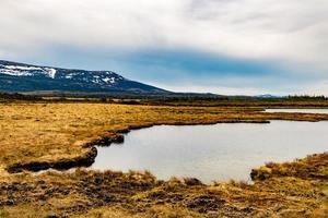 the trail to the pond. Gros Morne National Park, Newfoundland, Canada photo