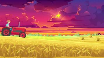The Farmer Is Working On His Field In The Evening video