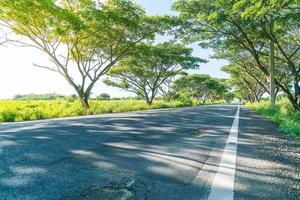 Carretera asfaltada en el bosque: mejore el estilo de procesamiento del color con efecto de llamarada foto