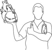 male doctor holding a human heart vector