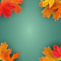 Autumn natural background template with falling leaves vector