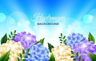 Floral Hydrangea Background vector
