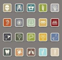 Human anatomy icons illustration set vector