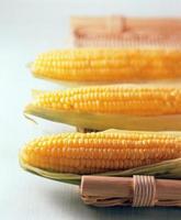 maíz fresco para la alimentación foto