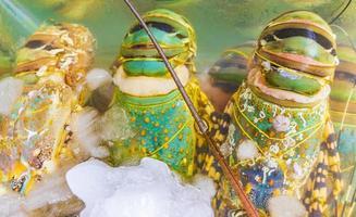 Mariscos crudos tailandeses en Koh Samui, Tailandia foto