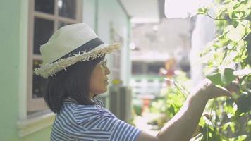 kvinnan bär stråhatt som bryr sig och beskär gröna växter under solljus. video