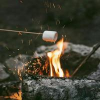 person burning marshmallows camp fire. photo